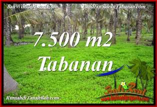 Beautiful LAND SALE IN TABANAN BALI TJTB390