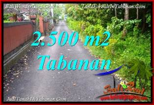 Affordable PROPERTY LAND SALE IN TABANAN SELEMADEG TJTB391