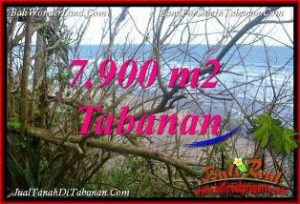 Exotic PROPERTY TABANAN BALI LAND FOR SALE TJTB392