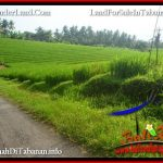 Magnificent 4,100 m2 LAND SALE IN TABANAN SELEMADEG TJTB394