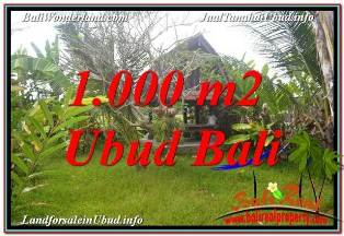 Magnificent 1,000 m2 LAND IN SENTRAL UBUD BALI FOR SALE TJUB680