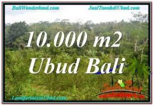 Magnificent PROPERTY UBUD TAMPAK SIRING 10,500 m2 LAND FOR SALE TJUB681