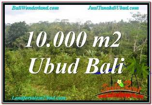 FOR SALE Beautiful 10,500 m2 LAND IN UBUD BALI TJUB681