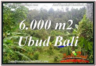 Beautiful UBUD BALI 6,000 m2 LAND FOR SALE TJUB682