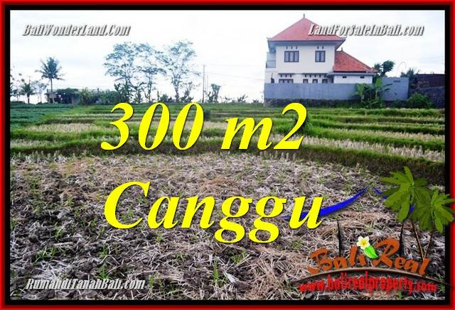 Affordable PROPERTY CANGGU LAND FOR SALE TJCG230