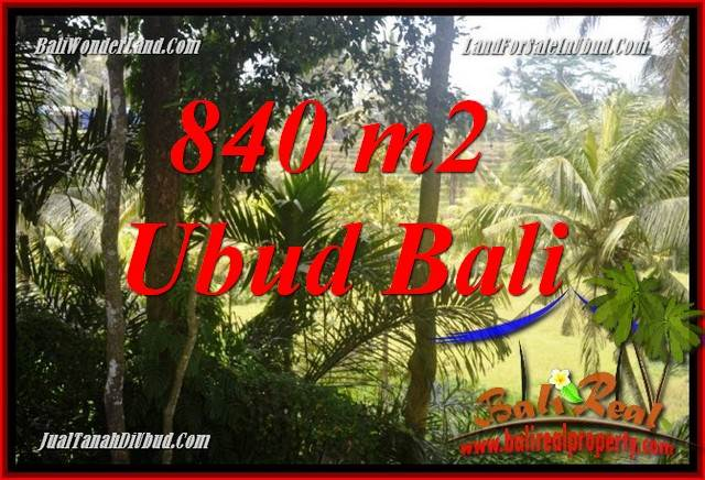 Magnificent Property 840 m2 Land sale in Lod Tunduh TJUB685