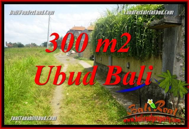 Beautiful Property 300 m2 Land in Lod Tunduh Bali for sale TJUB687
