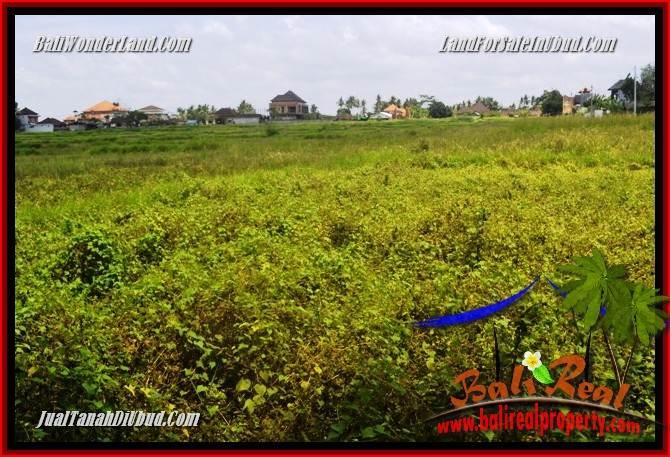 Beautiful Property Land in Ubud Bali for sale TJUB687