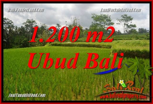 Exotic Property 1,200 m2 Land for sale in Ubud Tegalalang TJUB693