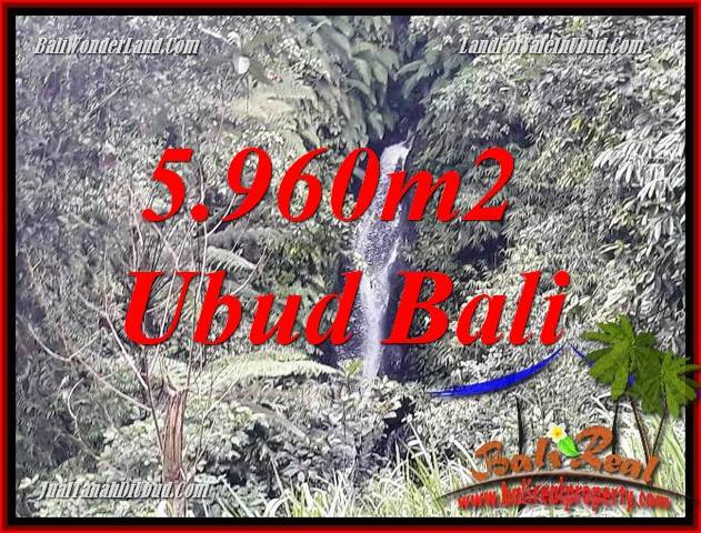 Magnificent 5,960 m2 Land sale in Ubud Bali TJUB696
