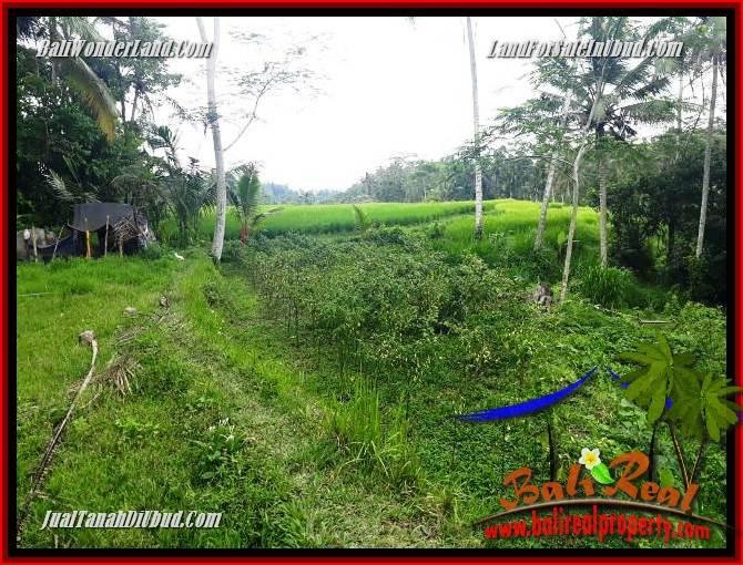 Beautiful Property Ubud Bali Land for sale TJUB696