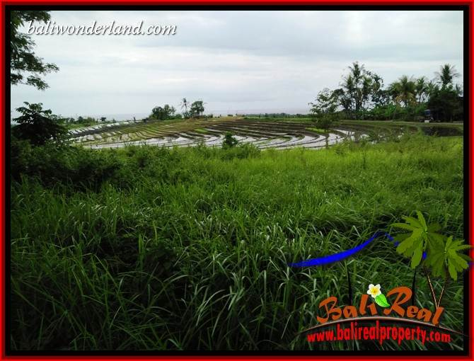 FOR sale Magnificent Property 4,500 m2 Land in Tabanan Selemadeg TJTB395
