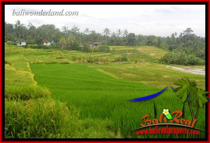 Beautiful Property Land in Tabanan Bali for sale TJTB396