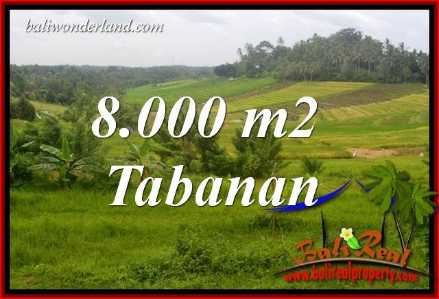 Affordable 8,000 m2 Land for sale in Tabanan Selemadeg Bali TJTB397