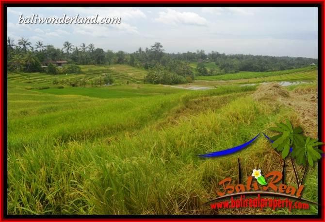 Beautiful Land sale in Tabanan TJTB397