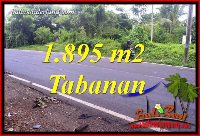 FOR sale Affordable Property 1,895 m2 Land in Tabanan Bali TJTB399