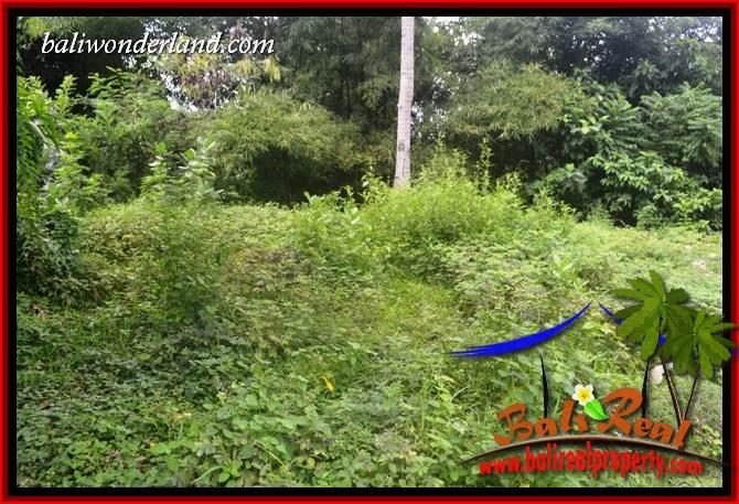 Beautiful Property 1,895 m2 Land in Tabanan Selemadeg Bali for sale TJTB399