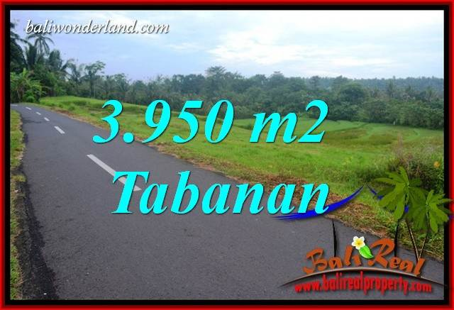 Exotic 3,950 m2 Land sale in Tabanan Bali TJTB402