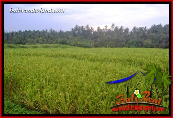 Tabanan Selemadeg Bali Land for sale TJTB402