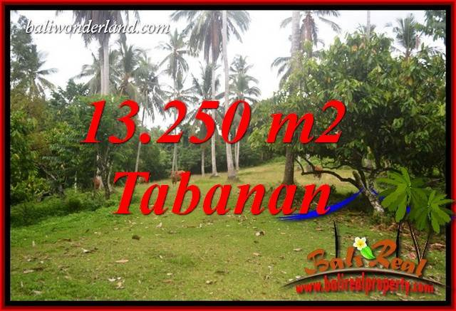 FOR sale Magnificent 13,250 m2 Land in Tabanan Bali TJTB403