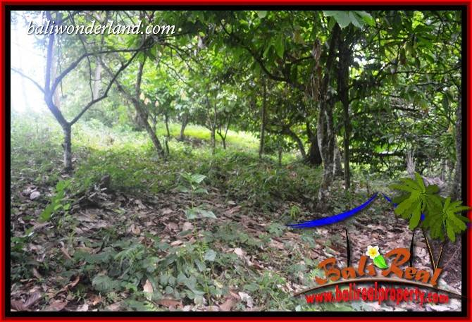 Exotic 13,250 m2 Land in Tabanan Bali for sale TJTB403