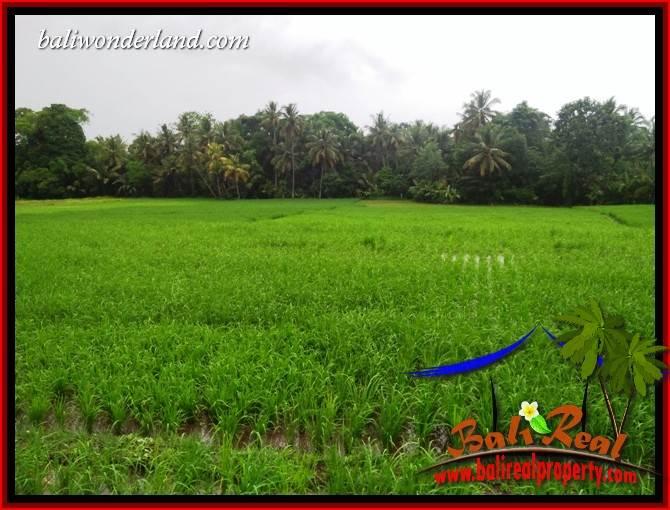 Affordable Property Land in Tabanan for sale TJTB404
