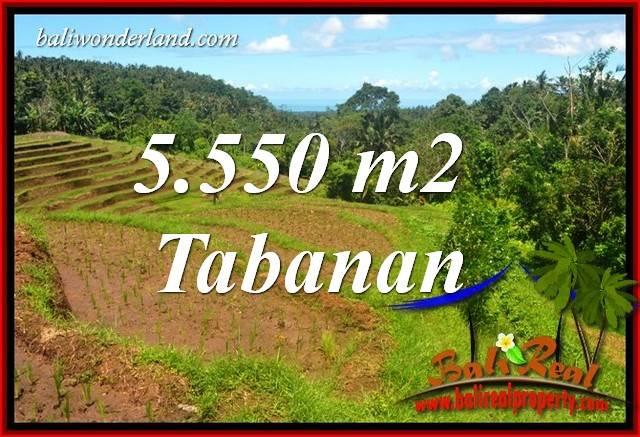 5,550 m2 Land for sale in Tabanan Bali TJTB405