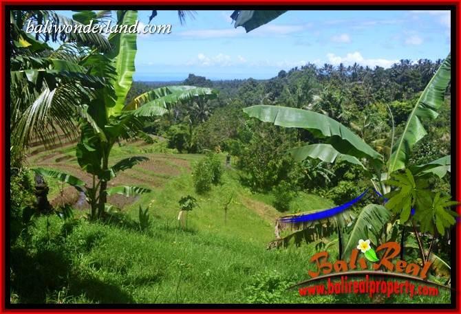 Affordable 5,550 m2 Land in Tabanan Bali for sale TJTB405