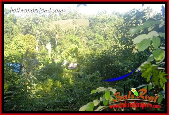 Land sale in Tabanan Selemadeg Bali TJTB406