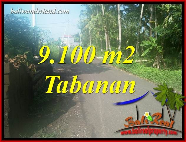 Exotic Land for sale in Tabanan TJTB407