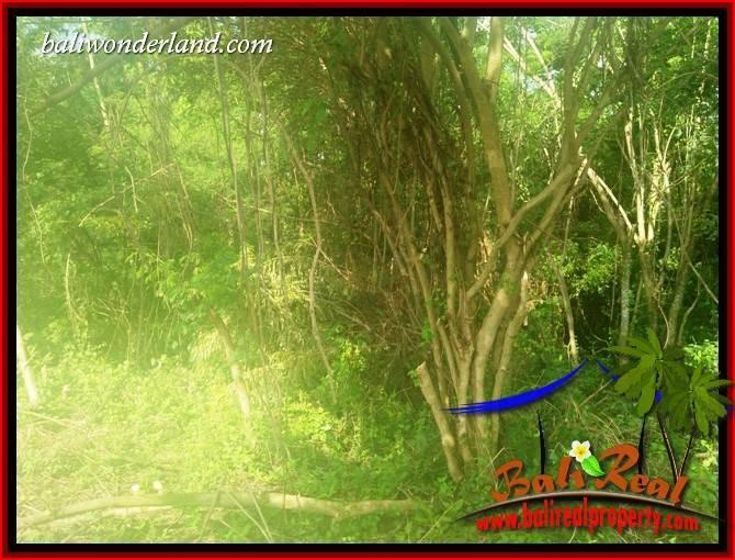 Tabanan Kerambitan Bali Land for sale TJTB407