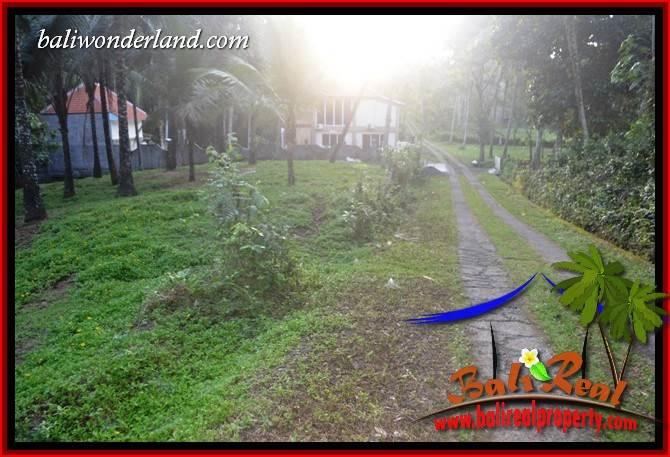 FOR sale Beautiful 5,000 m2 Land in Tabanan Bali TJTB408