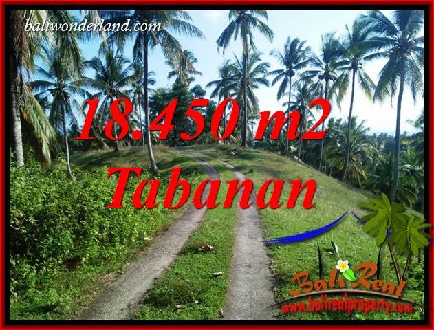 FOR sale Magnificent 18,450 m2 Land in Tabanan Bali TJTB410