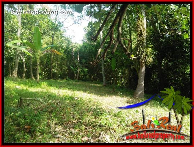 Exotic Property 2,800 m2 Land in Tabanan Selemadeg for sale TJTB411