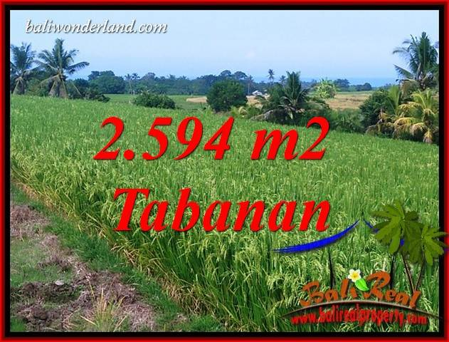 Exotic Property Tabanan Selemadeg 2,594 m2 Land for sale TJTB414