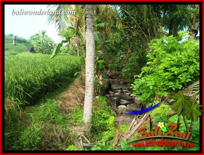 Affordable Tabanan Bali 2,594 m2 Land for sale TJTB414
