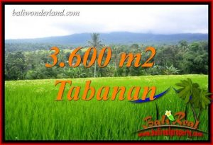 FOR sale Land in Tabanan Penebel Bali TJTB415