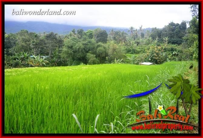 FOR sale Land in Tabanan Penebel Bali TJTB415