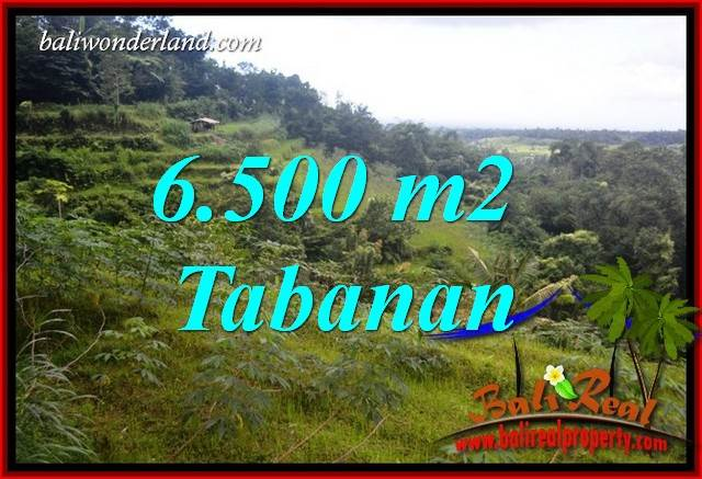 Magnificent Property 6,500 m2 Land sale in Tabanan Penebel TJTB416