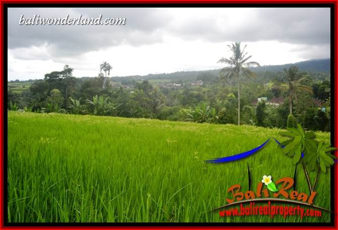 Magnificent Property 6,500 m2 Land sale in Tabanan Penebel TJTB416
