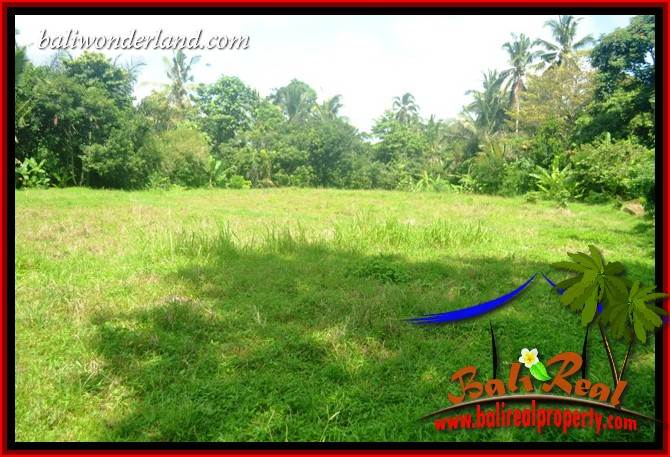 Magnificent Land in Tabanan for sale TJTB417