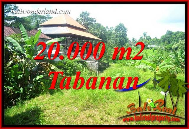 Tabanan Bali 20,000 m2 Land for sale TJTB418