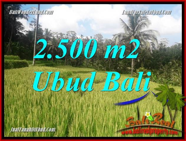 Beautiful Property 2,500 m2 Land in Ubud Tegalalang Bali for sale TJUB690