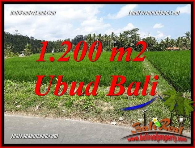 FOR sale Beautiful Property Land in Ubud TJUB694