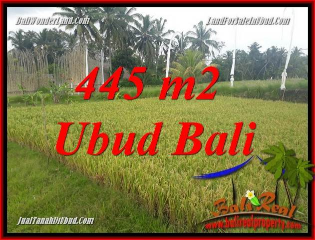FOR sale Magnificent Land in Ubud Bali TJUB695