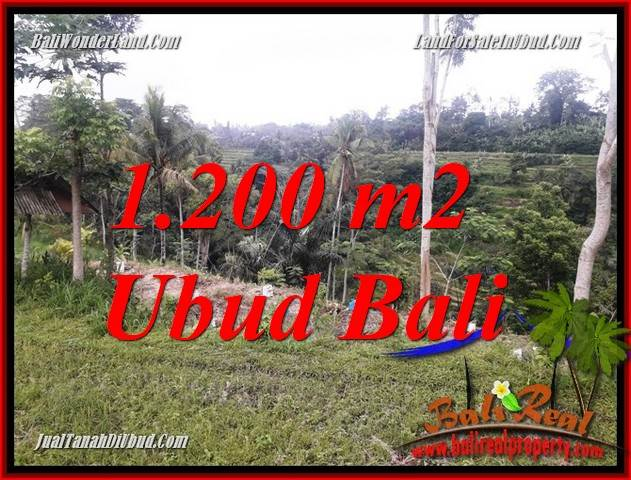 Beautiful Property Ubud Tegalalang 1,200 m2 Land for sale TJUB699