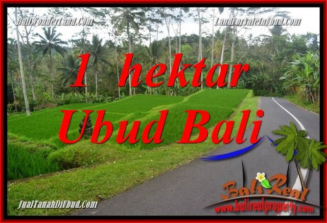 Magnificent Property 10,000 m2 Land in Ubud Tegalalang Bali for sale TJUB683