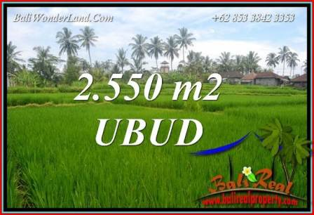 Exotic Property 2,550 m2 Land in Ubud Pejeng for sale TJUB700