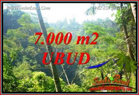 Magnificent 7,000 m2 Land for sale in Ubud Tegalalang Bali TJUB714