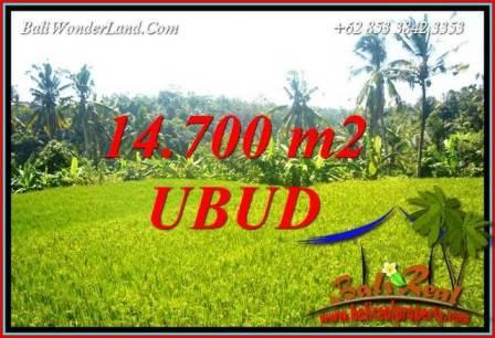 Exotic Land in Ubud Bali for sale TJUB717
